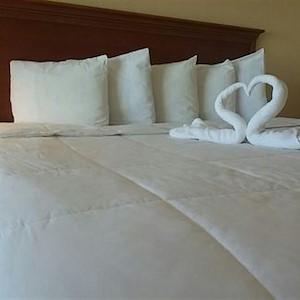 Emerald Shores Bed Towel Swans